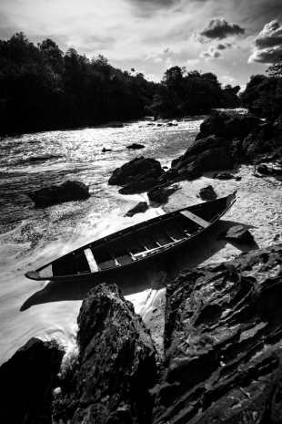 Amazonia #78