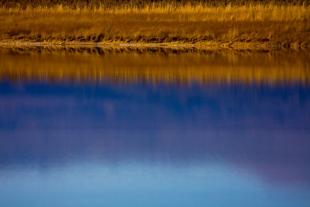 Reflection Salar #1