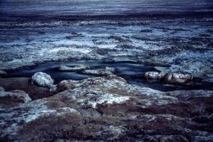 Cold Salar Atacama #2