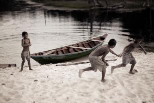 Amazonia #25