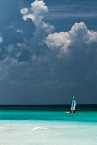 Caribe #74