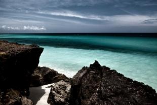 Caribe #65