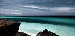 Caribe #66