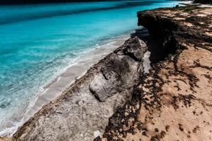 Caribe #49