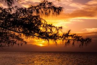 Caribe #2