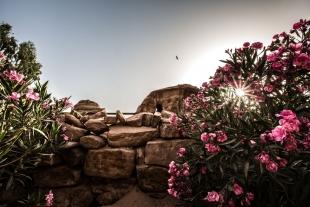 Jordânia #31