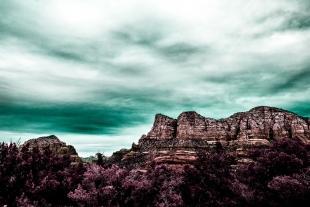Arizona #33