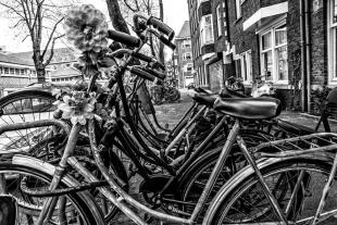 Amsterdam #32
