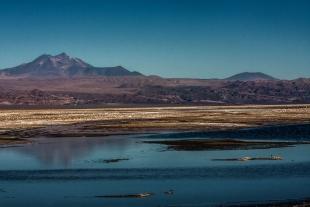 Atacama #11