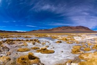 Atacama #99
