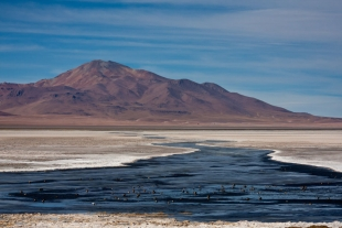 Atacama #22