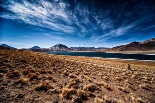 Atacama #63