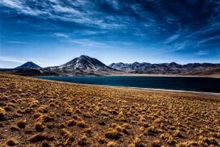 Atacama #64