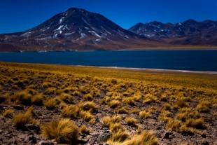 Atacama #65