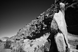Atacama #71