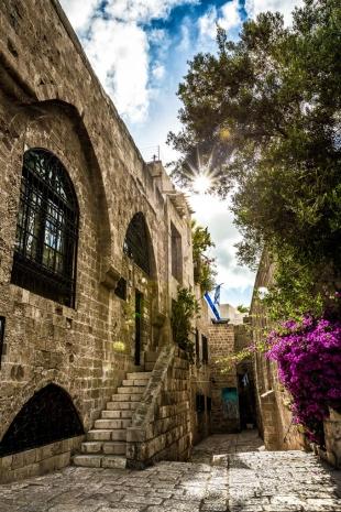 Israel #105