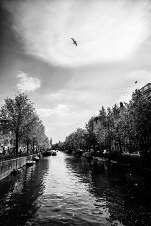 Amsterdam #102