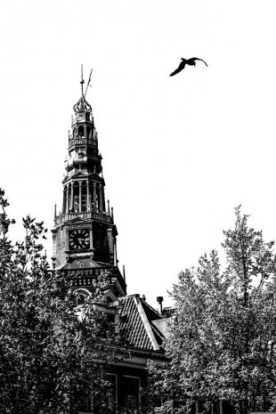 Amsterdam #95