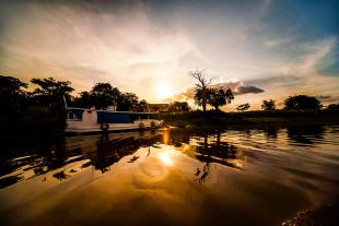 Amazonia #127