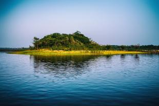 Amazonia #112