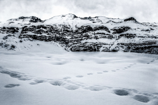 Vale Nevado #16