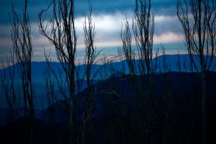 Vale Nevado #4