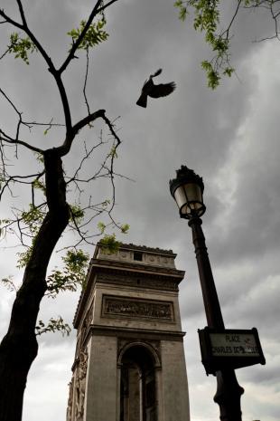 Paris #31
