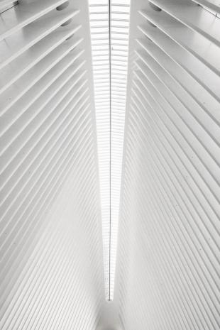 New York #83