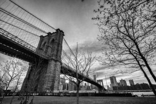 New York #97