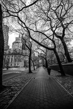 New York #127