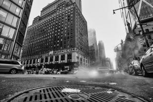 New York #144